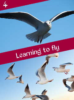 B4 Learning to fly